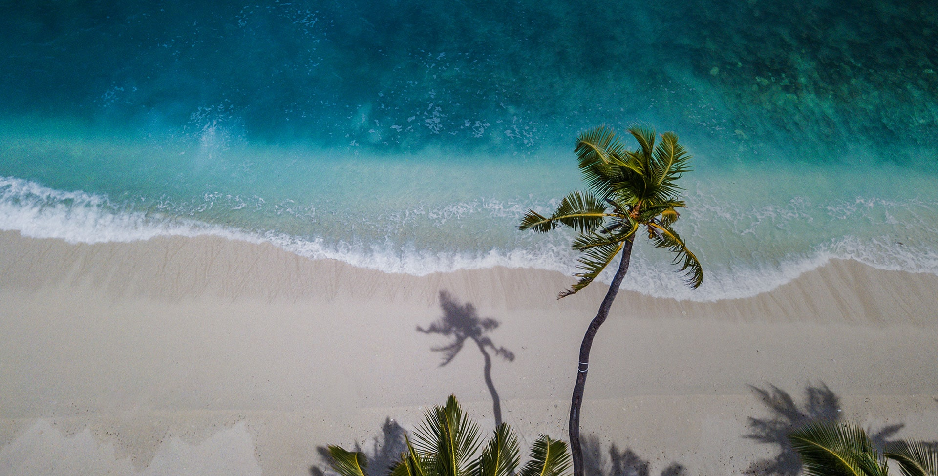 Eat. Beach. Sleep. Repeat.